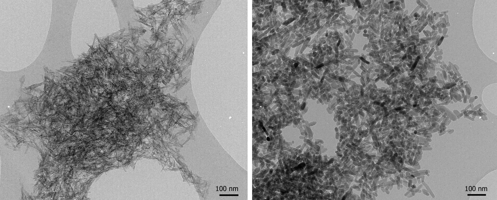 Calcium phosphate wet precipitate before (left) and after (right) autoclave treatment (Karin Müller, CAIC, doi.org/10.1016/j.biomaterials.2013.10.041).