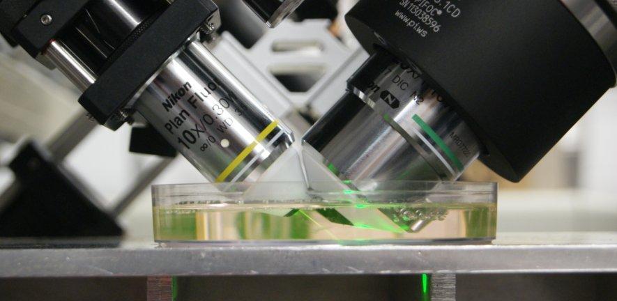 CAIC's prototype light sheet microscope